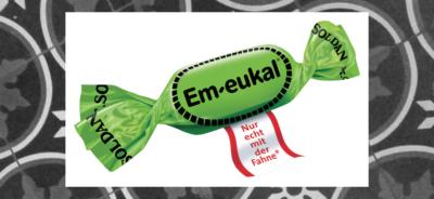 Em-eukal bloggerfactory